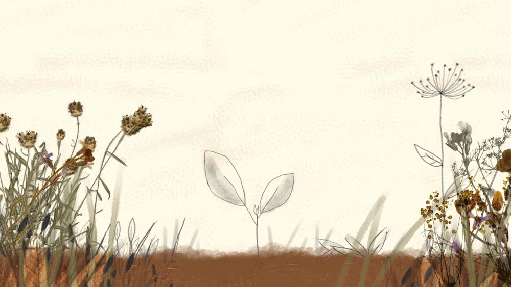 animation-studio-argentina-juan-falu-3